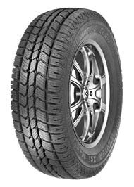 Winter Xsi Tires